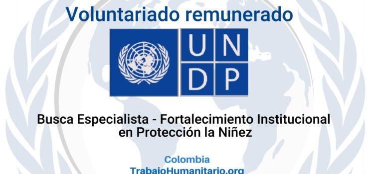 Voluntariado remunerado con PNUD: Especialista Fortalecimiento Institucional en Protección la Niñez