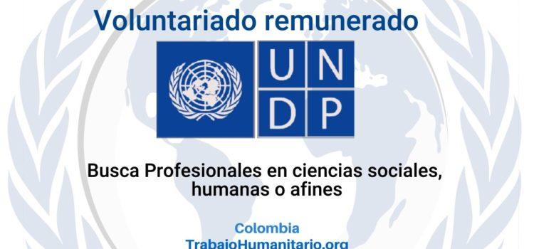 Voluntariado remunerado con PNUD-Unicef: Especialista en Protección