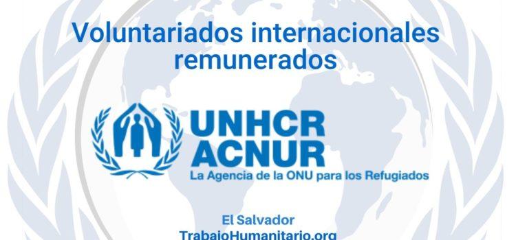 Voluntariados remunerados con ACNUR