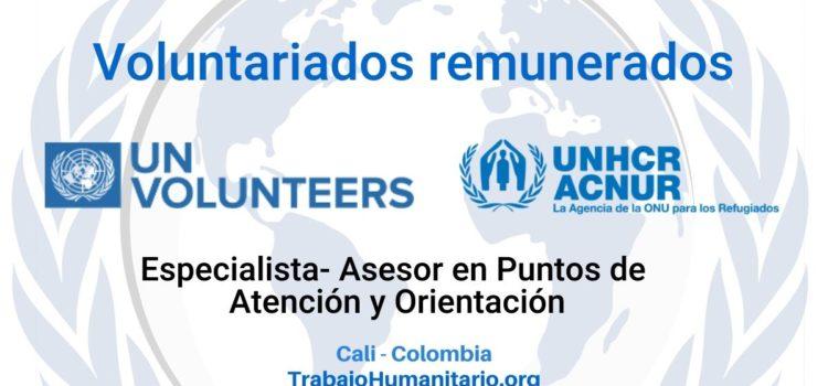 Voluntariado remunerado con ACNUR en Cali