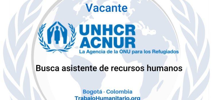 ACNUR busca asistente de recursos humanos