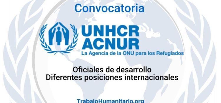 ACNUR busca oficiales de desarrollo – Diferentes posiciones internacionales