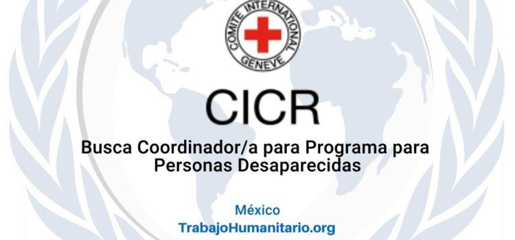 CICR en México busca coordinador/a para programa de personas desaparecidas